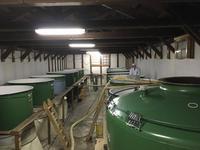 horinoi_7_fermentation_room.jpg