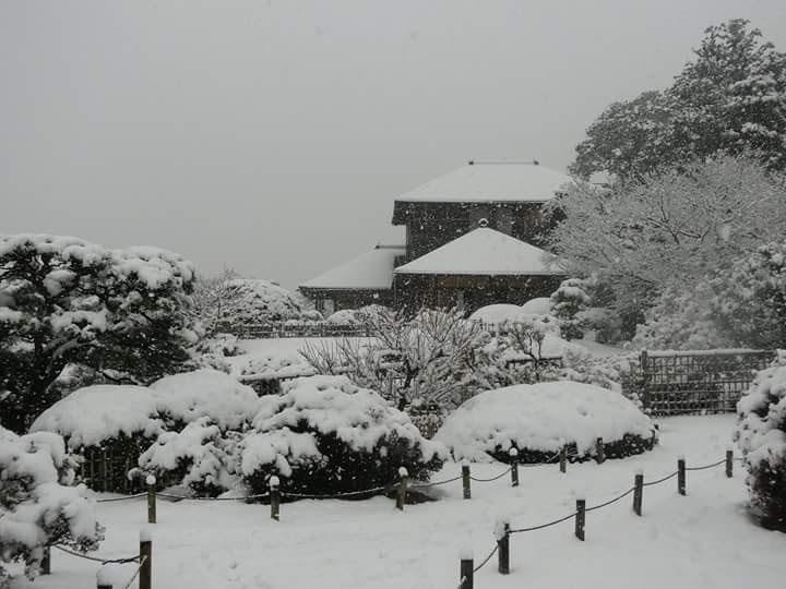 http://www.nipponnosake.com/kura/images/hyakusai_1_snow_brewery.jpg