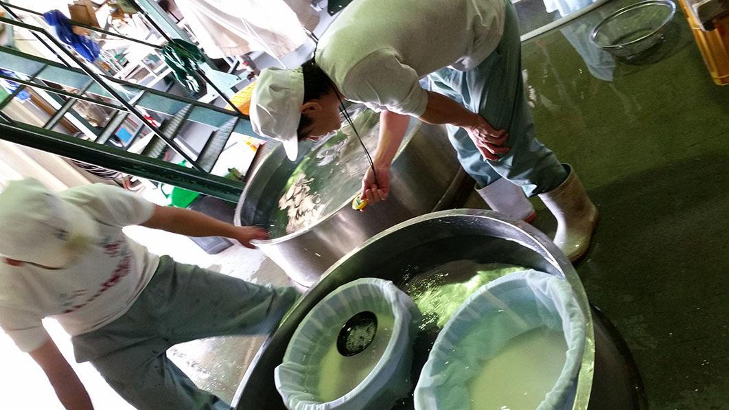 http://www.nipponnosake.com/kura/images/hyakusai_5_soaking.jpg