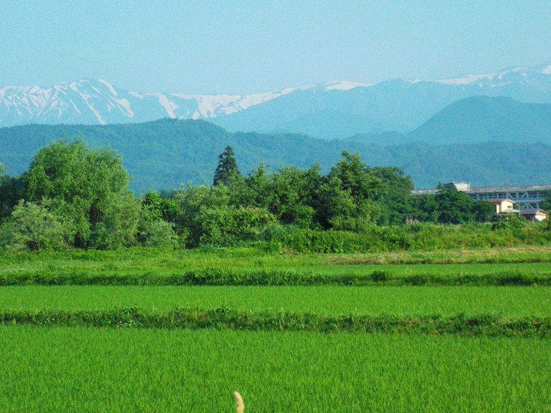 http://www.nipponnosake.com/kura/images/kanazawaya_1_kura_shuhen.jpg